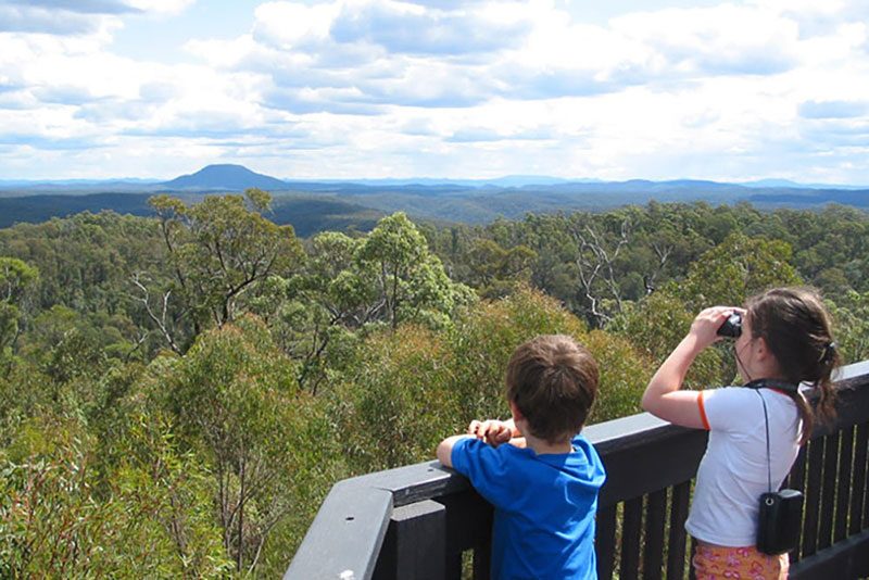Finchley Lookout, Yengo National Park